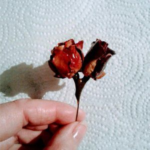 Jewelry - vintage dried rose flower stick pin